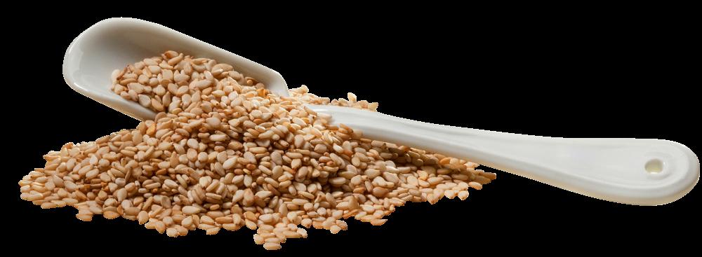 Sesamsaat ungeschält, Natur 500g